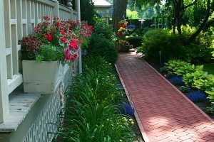 a clean brick walkway running between two gardens in the front of a home
