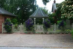 a gazebo behind a fence decorated with purple clematis planters