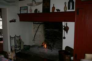 a fire in a stone fireplace. a small dog looks to the left