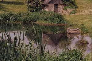 Looking over a pond at an old stone spring house