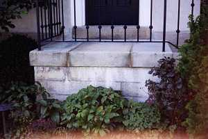stone steps with a black railing whose base is surrounded by shrubs